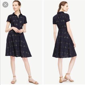 Ann Taylor Tennis Eyelet button down dress Size 6